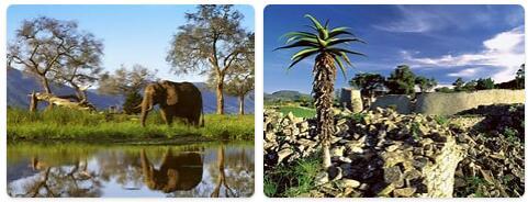 Top Attractions in Zimbabwe