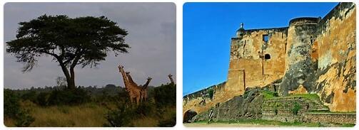 Top Attractions in Kenya