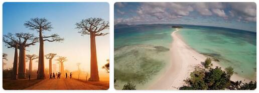 Top Attractions in Madagascar