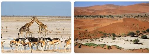 Top Attractions in Namibia