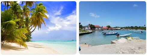 Top Attractions in Trinidad and Tobago